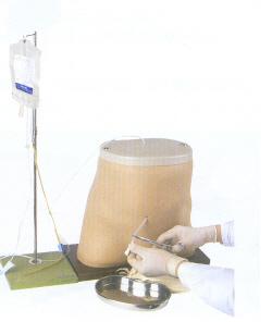 腹膜透析模型